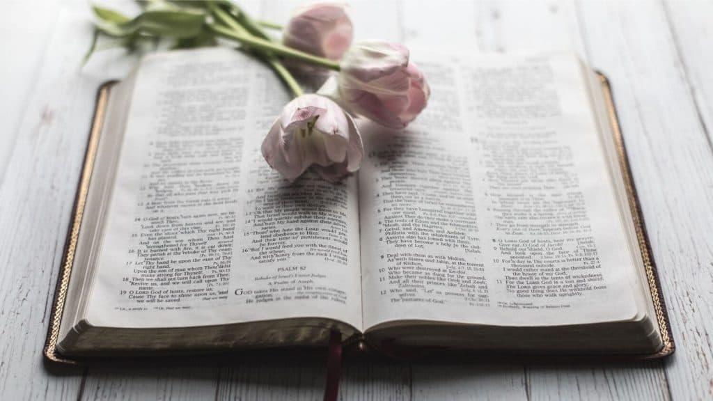 tulips lying on top open Bible