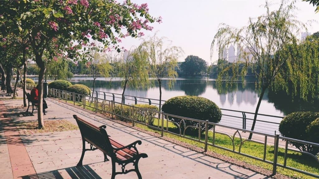 park bench beside lake