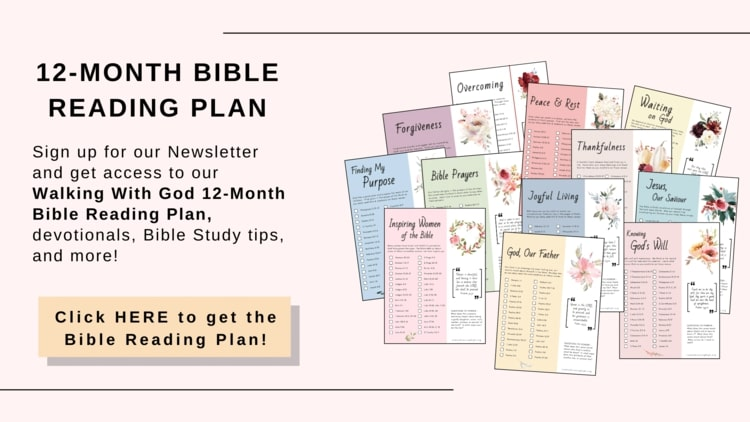 Bible study resources 12 Bible reading plans pink background