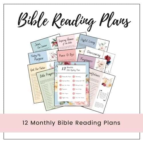 12 Bible reading plans white background